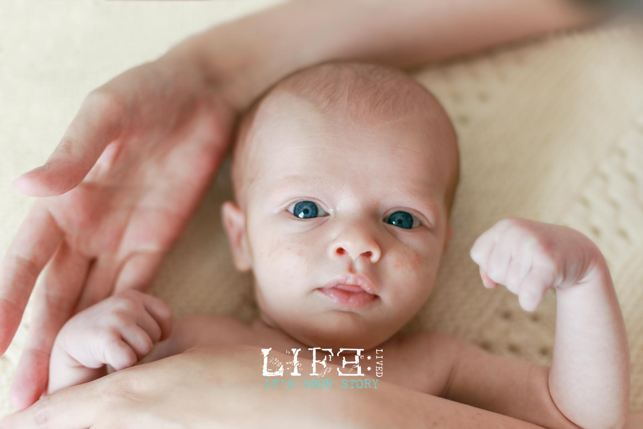 lincoln_documentary_family_photographer-6