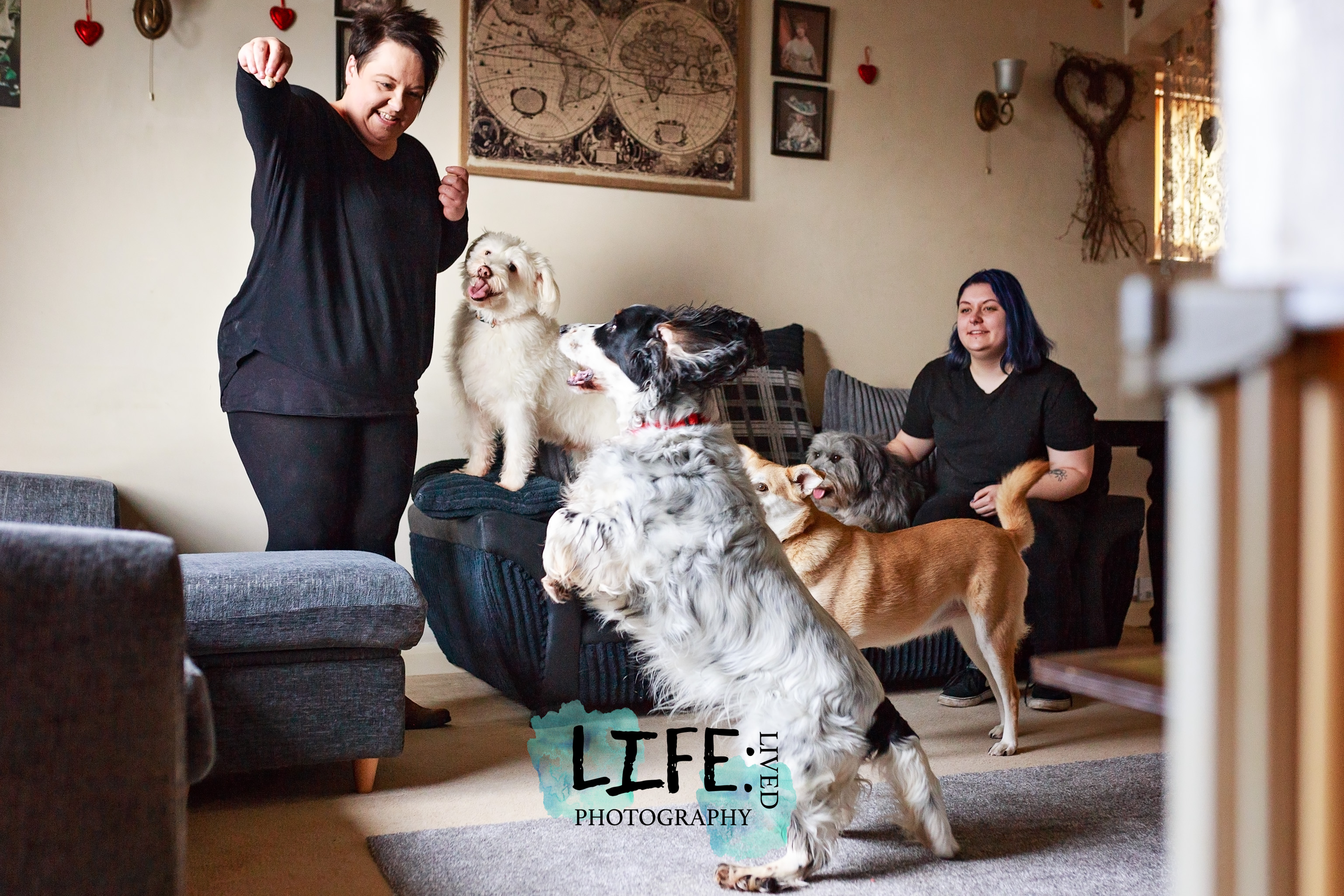 lincoln_pet_family_photographer-1