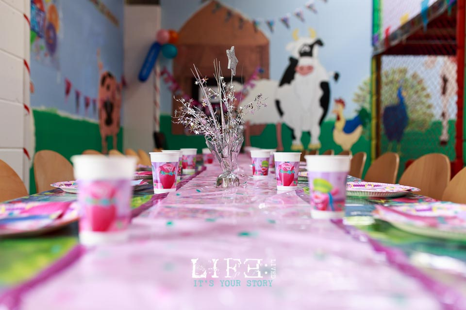 lincoln-lifestyle-child-birthday-photographer-lifelivedphotography-hollytree-4