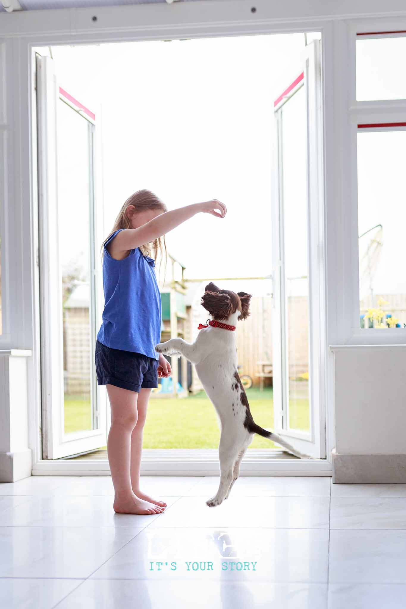 lincoln-pet-child-photographer-7