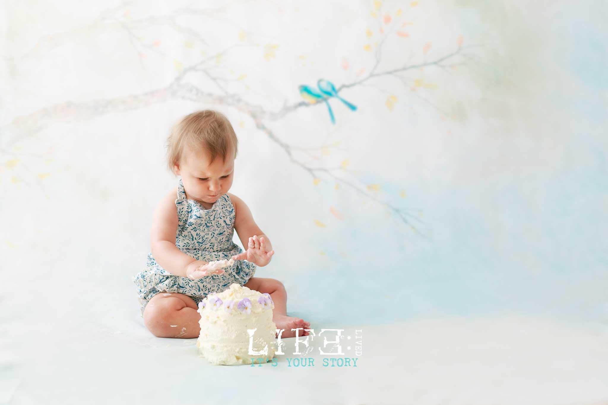lincoln-cake-smash-photography-8