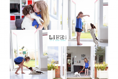 lincoln-pet-child-photographer