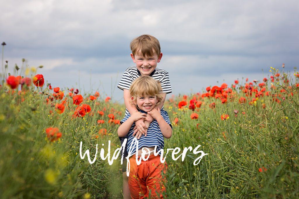 children in poppy field