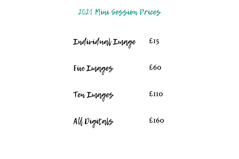 mini_session_pricing_lifelivedphotography